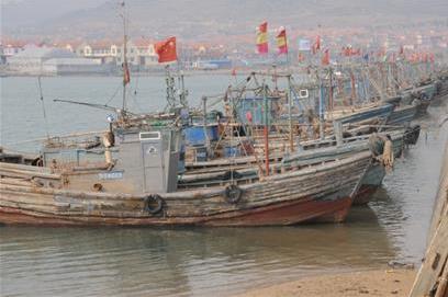 山东青岛市多数渔船歇业开始检修 小海鲜节前看涨