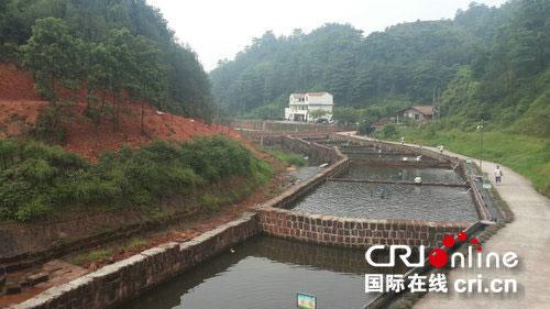 """活水养鱼池是黄仲林,韩显英夫妇自己设计修建的,堪称""""小都江堰"""":在"""