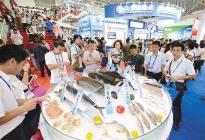 """会办成国内第二大水产专业性展会的信心,奠定了""""北有大连(青岛)渔博会"""