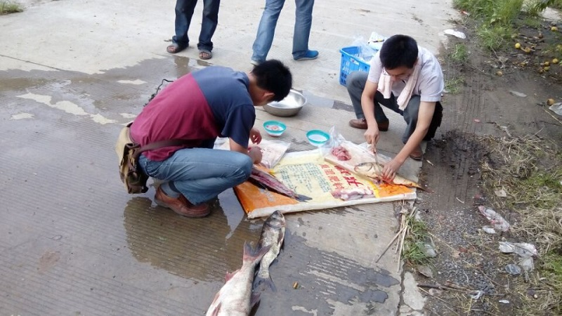 安徽滁州市水产站开展年度第2次水产品质量安全