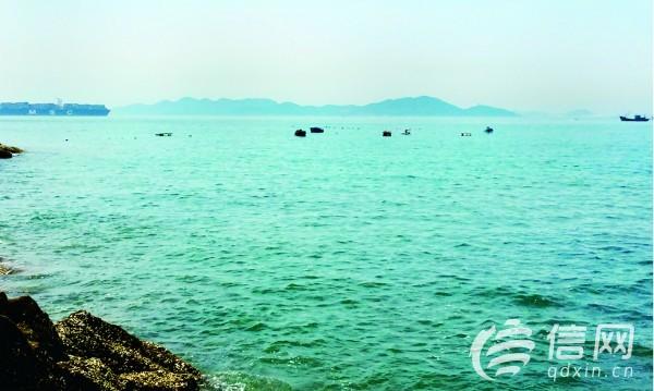 水产资讯 山东青岛八大关海域现浮    环视四周,城市信报/信网记者