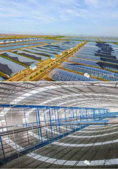 江苏东辛农场水产养殖物联网建设再推新举措