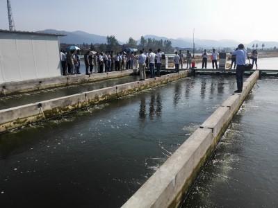 池塘循环水养殖设施构造