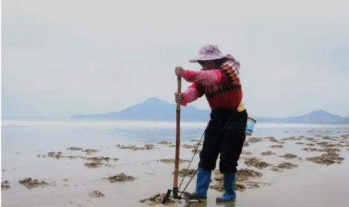 福建漳州东山岛金銮湾