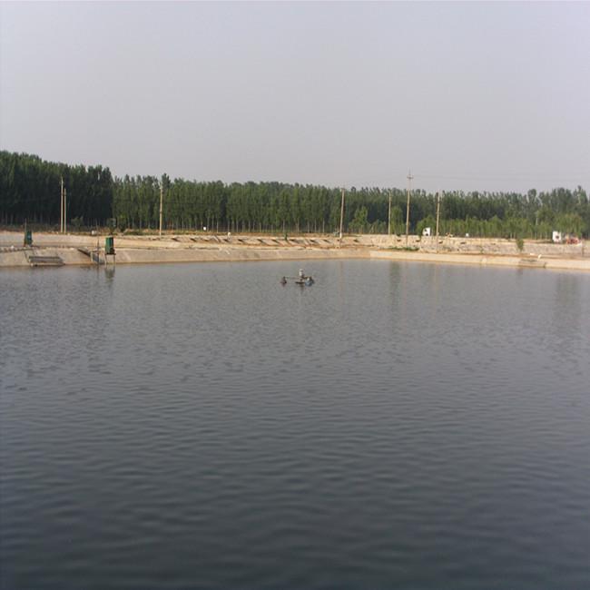 山东聊城市东阿县:省级良种场标准化池塘改造告捷