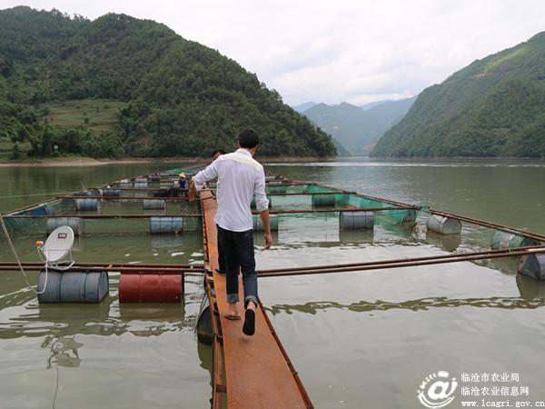 云县有多少人口_临沧第一条县域高速今年底通车 云县至凤庆只需20分钟