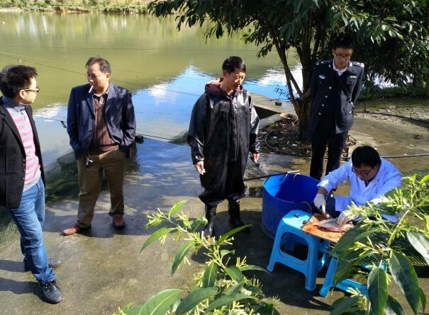 重庆丰都接受市级产地水产品质量安全监督抽查