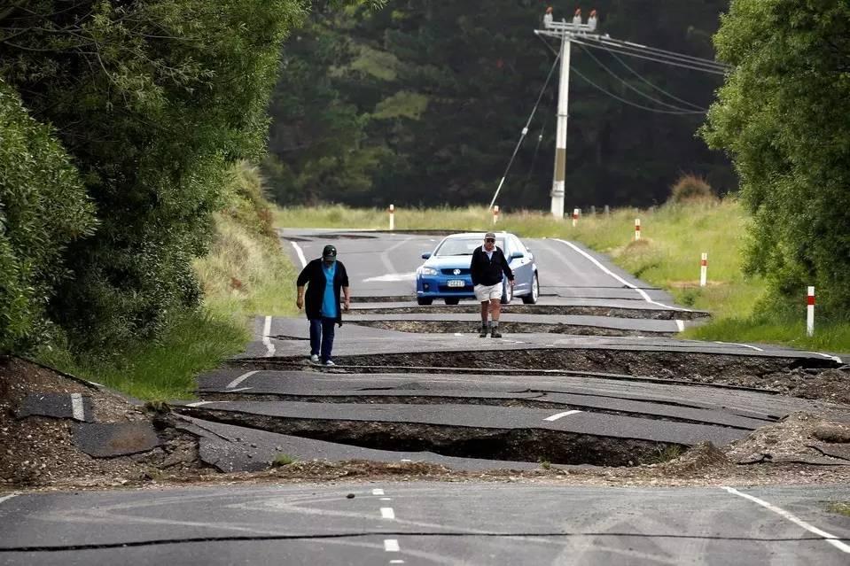 大量鲍鱼龙虾被地震掀到海岸 新西兰人如何反应