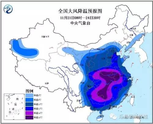 """寒潮来袭""""速冻""""我国""""大江南北"""""""