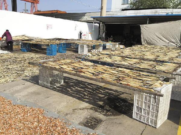台州干水产品批发市场内,商家们正在晾晒各种鱼虾原材料。 拥有630多公里海岸线的台州,由于其丰厚的渔业资源令当地渔民受益无穷。除了新鲜的海鲜之外,干水产品也是一些台州人冬补时节最爱的食材。还未走近台州干水产品批发市场,远远便能闻到一股浓重的海腥味。11月28日,冬季西北风盛行,天气晴朗,台州市椒江区工人西路的台州干水产品批发市场内的批发商正在晾晒各种鱼虾原材料。不少批发商告诉记者,全市绝大部分酒店餐桌上的干水产品来自于此,而周边城市的不少商贩也会从这个市场进货,这里干水产品的价格反映着台州的行情,而虾干