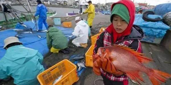 日本福岛水产核辐射物质检测达标,真的么?