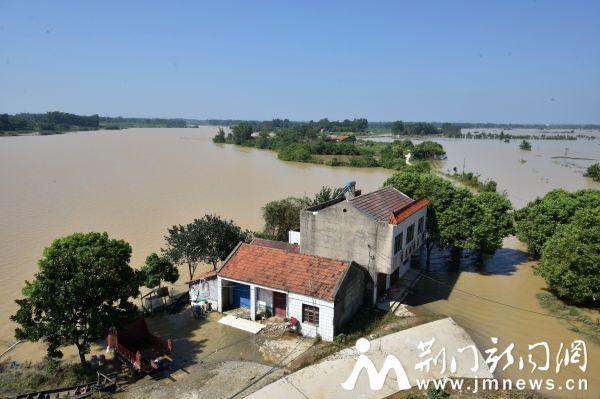 2016年湖北荆门市水产养殖业受灾并不减产 全年增