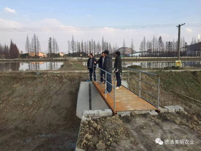 《德清钟管吴建荣水产养殖场池塘循环水养殖建设项目