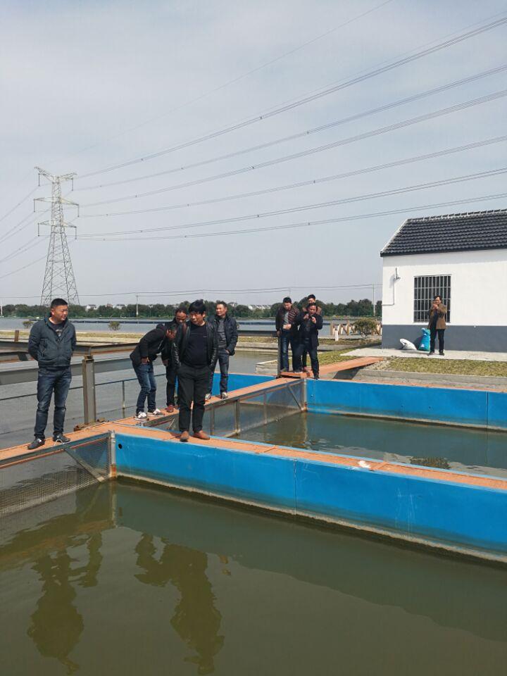 浙江兰溪市水产行业协会赴苏州吴江考察学习池塘循环流水养鱼技术