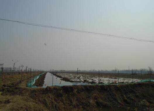完善了稻渔综合种养配套设施,进排水系统,以确保稻渔综合种养双千工程