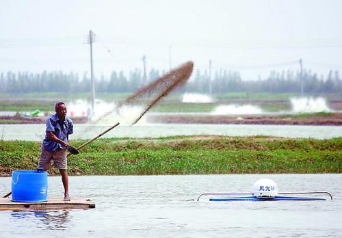 针对水产动保乱象,陈昌福再发呼吁:在水产养殖中对经验性用药效果应该持慎重态度!