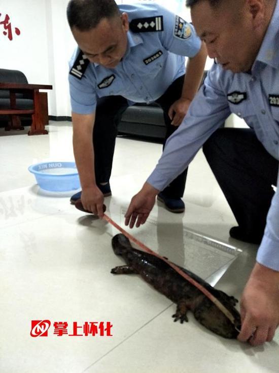http://www.shuichan.cc/upload/news/news/n2017051610311780.jpg