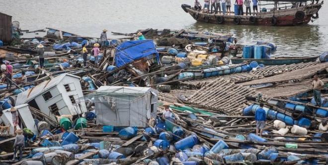 台风险面世了,什么时候水产养殖户能投保呢?