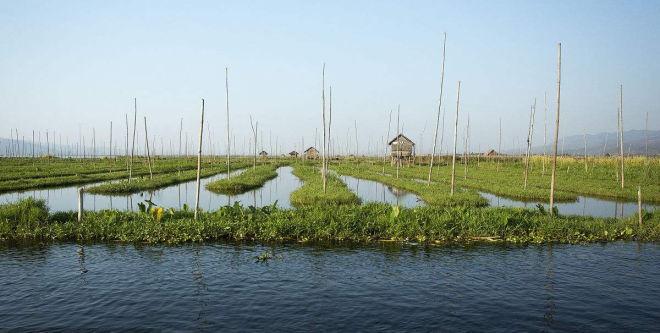 在当前形势下,不做好这几点,想做好水产养殖业很难!
