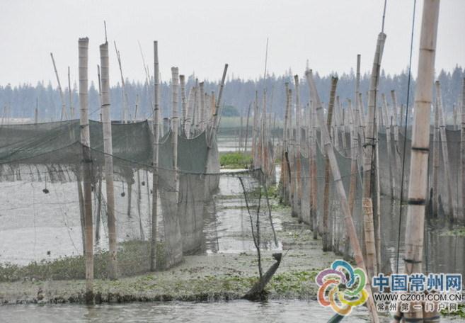 34年-湖史-结束 全国网围养殖发源地拆除所有网围