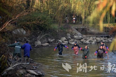 """壮观!武科大""""沁湖鱼宴""""4万师生一同免费吃鱼"""