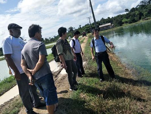 """""""巴西水产养殖技术合作与产业开发项目""""技术"""