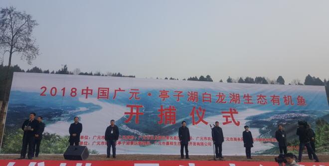 四川广元举行2018亭子湖、白龙湖生态有机鱼捕捞仪式