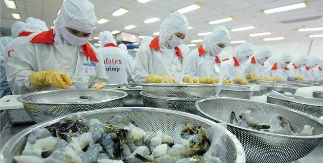 美国贸易保护大旗直指印度对虾出口,全球对虾市场难逃浩劫一场?