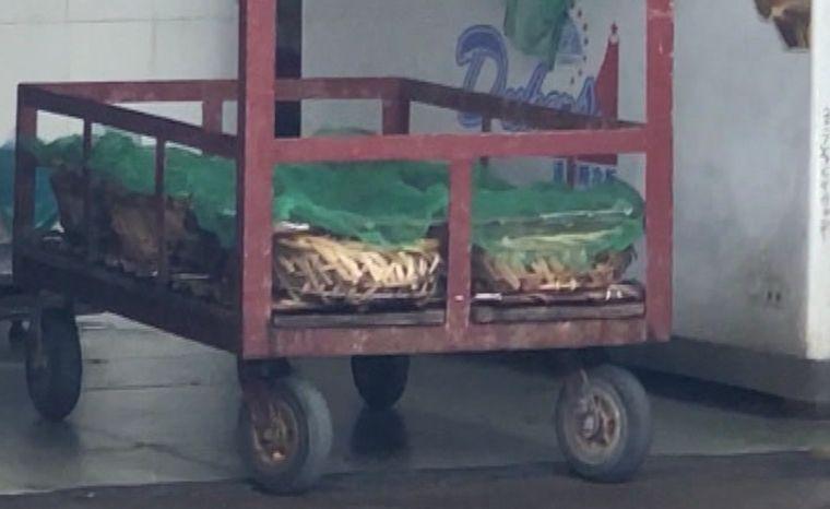 色素染鱼惊现广州市场,记者暗访为你揭露真相!