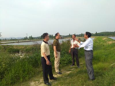 江西省九江市渔业局到德安县督导水产养殖废水排放工作