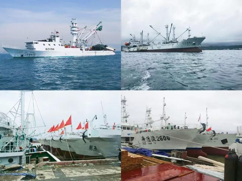 上半年浙江省舟山远洋渔业综合经济产出呈现良好增长新态势