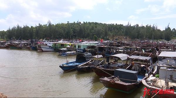 """受台风""""山竹""""影响 广西省钦州市1545艘渔船回港避风"""