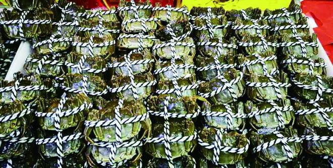 """大闸蟹梭子蟹""""横行"""" 哈尔滨人一天吃了5万斤"""