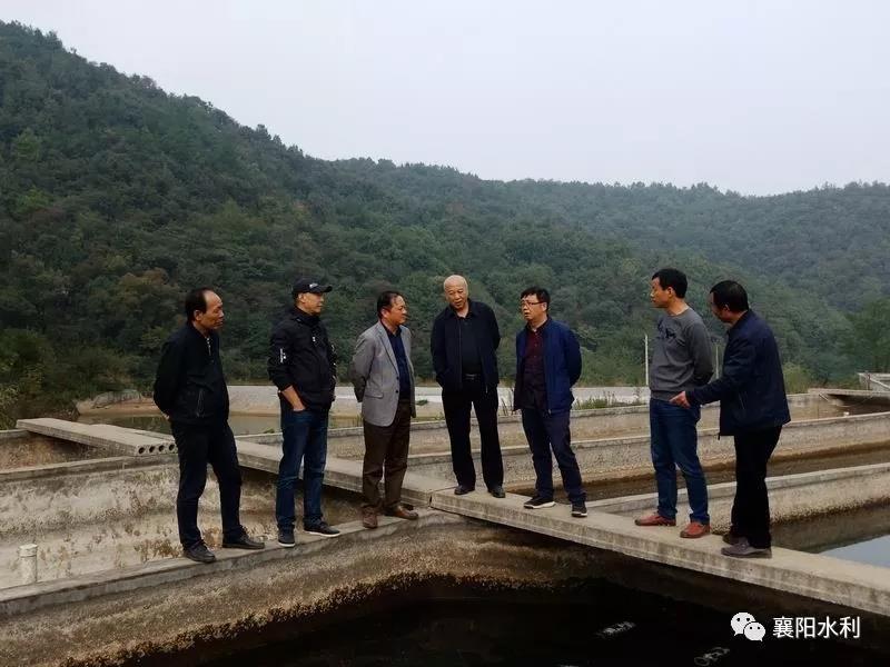 湖北省水产技术推广总站到襄阳调研稻田综合种