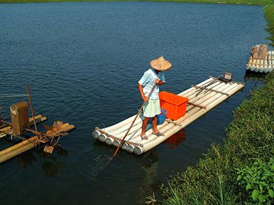 山东推进渔业高质量发展
