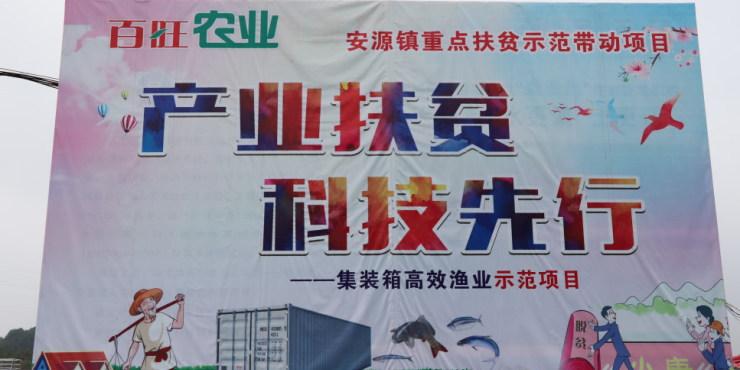 集装箱也能养鱼?江西省萍乡市安源区安源镇贫困户找到脱贫致富好出路