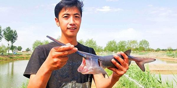 内蒙古包头市九原区举办2019年三湖河水产养殖试验示范基地 新品种养殖现场观摩会