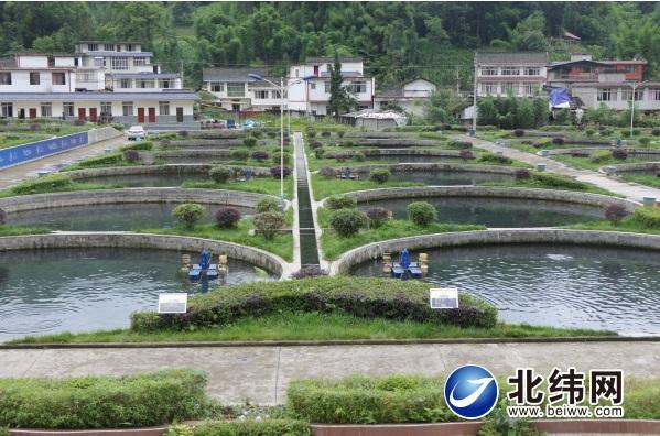 四川天全县:依托青山绿水 发展高效生态渔业