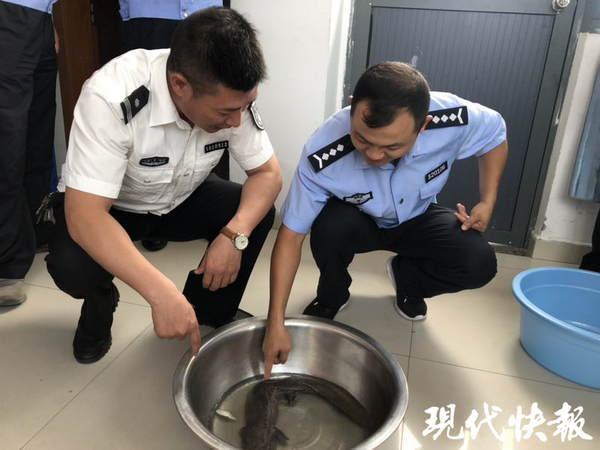 http://www.shuichan.cc/upload/news/news/n2019070110201624.jpg
