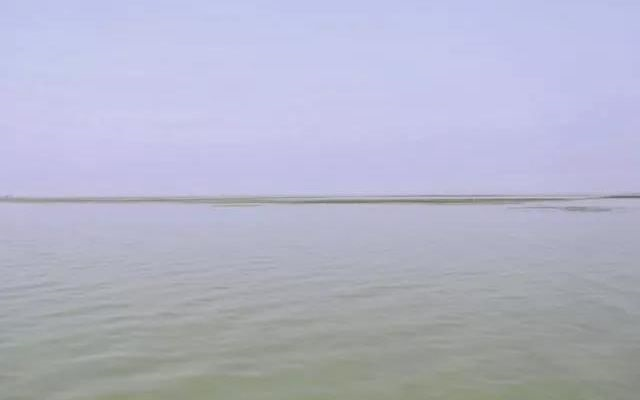44981亩太湖围网全拆除 太湖围网养殖成历史