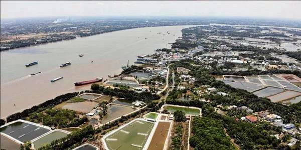 越南采取超集约化养殖,最大化提高南美白对虾产量