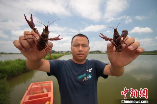 http://www.shuichan.cc/upload/news/news/n2019081911583914.jpg