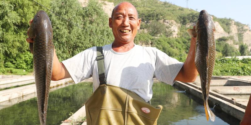 河北石家庄井陉县威州镇威河西村村民环保养鱼脱贫致富