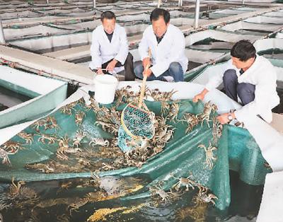 http://www.shuichan.cc/upload/news/news/n2019110810231944.jpg
