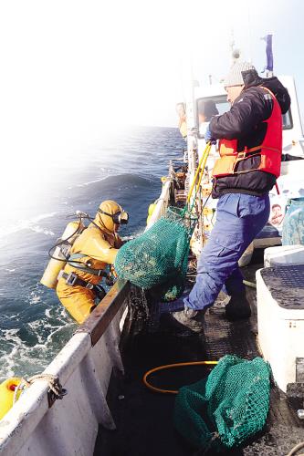 http://www.shuichan.cc/upload/news/news/n2019121111124662.jpg