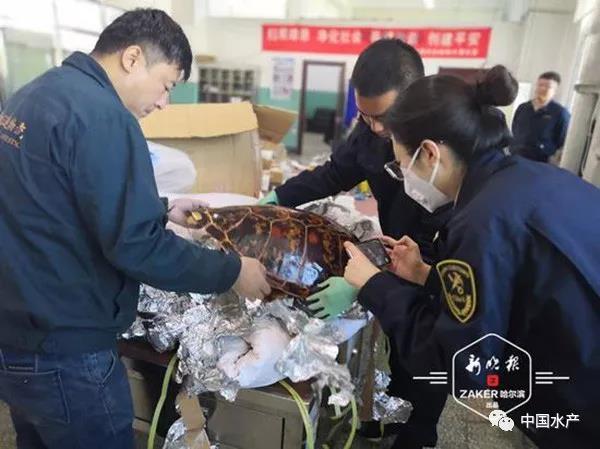 http://www.shuichan.cc/upload/news/news/n2019121117272698.jpg