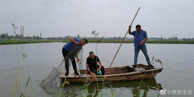 河南濮阳范县:小龙虾为脱贫致富开新路
