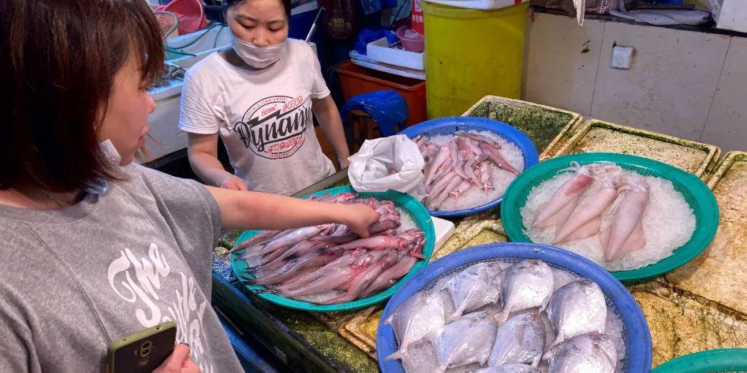 浙江温州人爱吃的梭子蟹价格涨了!降价预计在这个时候……