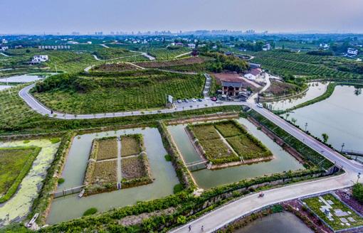 擦亮四川农业金字招牌 内江正全力打造百亿水产强市
