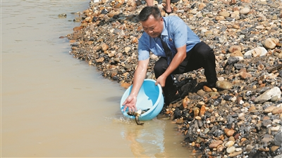 广西柳州:放鱼苗护生态